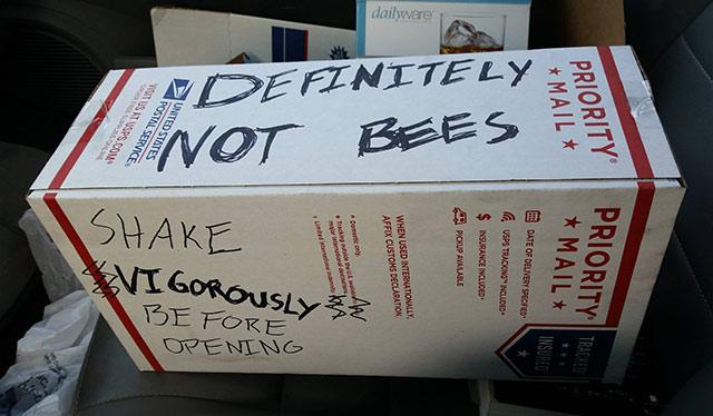mail-package-definitely-not-bees.jpg